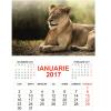 Calendare 2017
