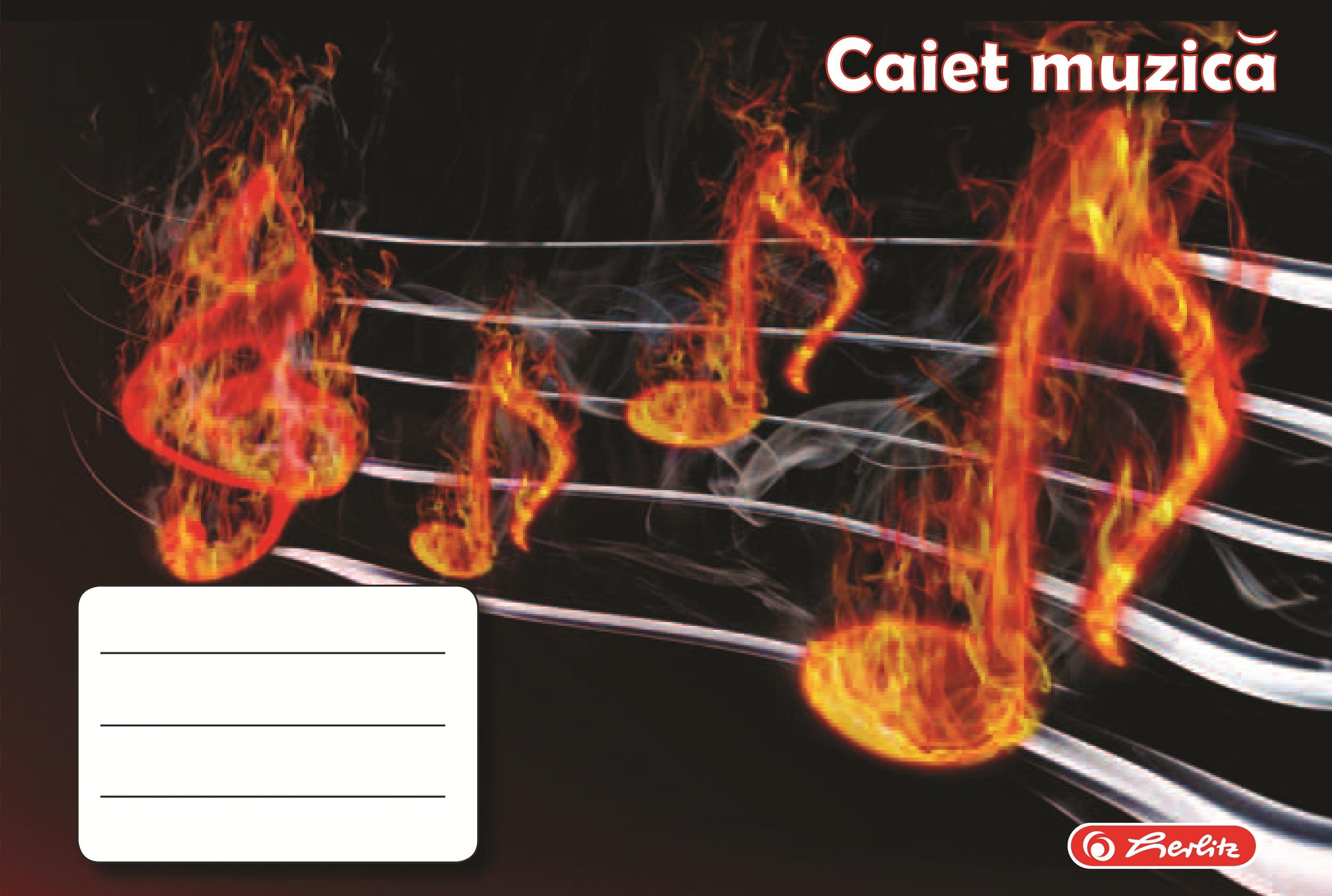 Caiet pentru muzica 17 x 24cm 24 file HERLITZ ROCK YOUR SCHOOL