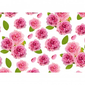 Hartie pt. ambalare, 70 x 200cm/rola, 70gr/mp, model cu trandafiri roz, HERLITZ