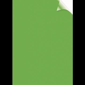 Coperti transparente, verde, A4, 200 microni, 100 buc/top, FELLOWES