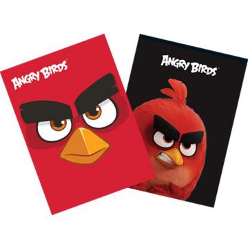 Coperta A4, color, PIGNA Angry Birds