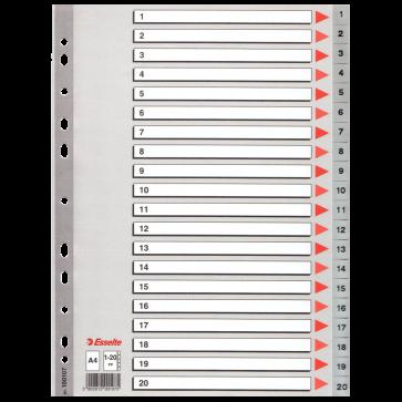 Separatoare din plastic, index 1-20, A4, ESSELTE