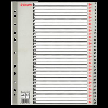 Separatoare din plastic, index 1-31, A4, ESSELTE Maxi