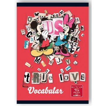 Vocabular, 12 x 17cm, 24 file, PIGNA Premium Minnie Mouse