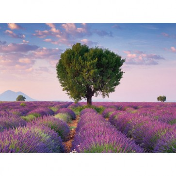 Puzzle Valensole Franta, 500 piese, RAVENSBURGER Puzzle Adulti