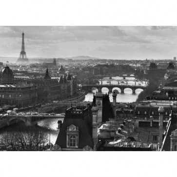 Puzzle Paris si raul Sena, 1000 piese, RAVENSBURGER Puzzle Adulti