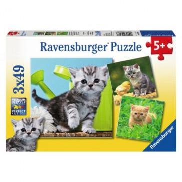 Puzzle pisicute, 3x49 piese, RAVENSBURGER