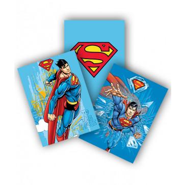 Coperta  A5, color, PIGNA Superman