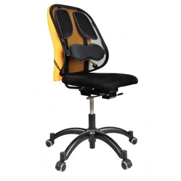 Suport ergonomic pentru spate, FELLOWES Professional Series, Mesh Back support
