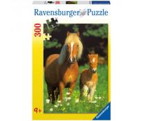Puzzle Cai, 300 piese, RAVENSBURGER Puzzle Copii