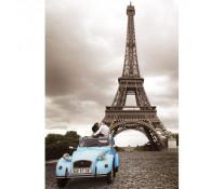 Puzzle romantismul Parisului, 1000 piese, RAVENSBURGER Puzzle Adulti