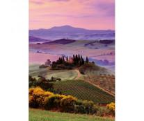Puzzle peisaj Toscan, 1000 piese, RAVENSBURGER Puzzle Adulti