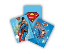 Coperta  A5, color, PIGNA Superman