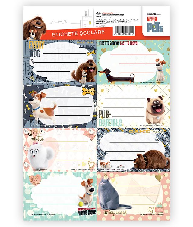 Etichete scolare 40 buc./set PETS