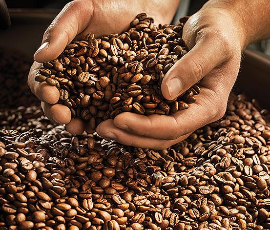 Descriere Cafea boabe, ambalaj resigilabil, 1kg, TCHIBO Barista Espresso