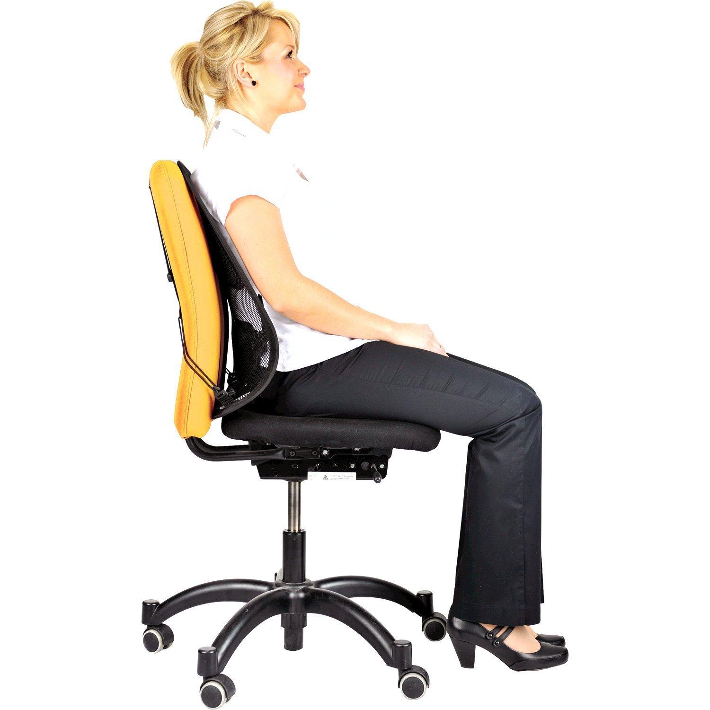 Descriere Suport ergonomic pentru spate, FELLOWES Office Suites